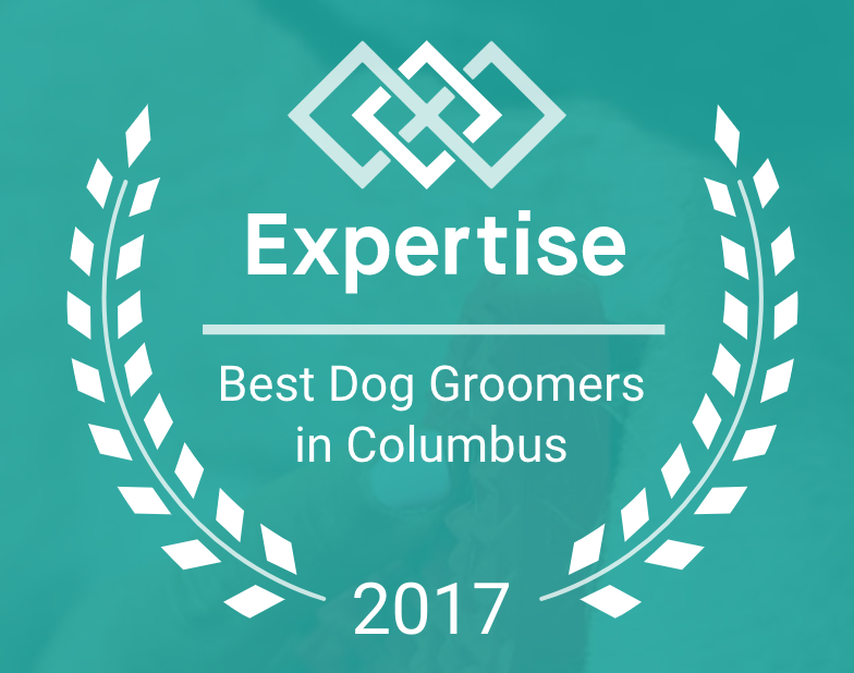 Best Dog Groomers in Columbus 2017 Award