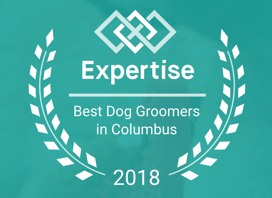 Best Dog Groomers in Columbus 2018 Award